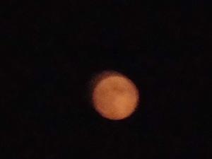 月齢13.4 月出18:45 月没03:55 2020/08/03 20:13撮影 雲のせいか異様に赤い月